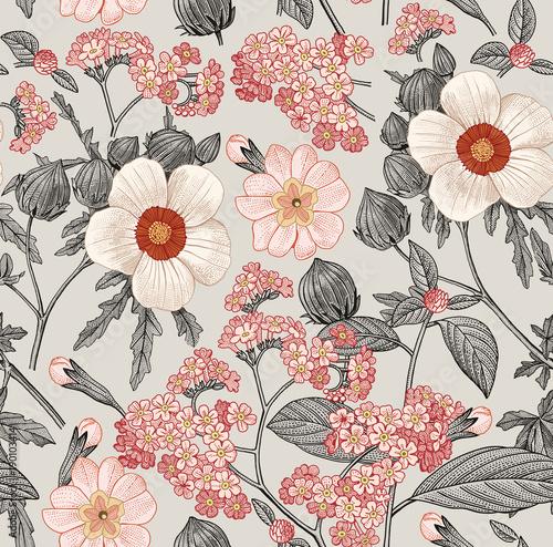 wzor-piekne-rozowe-kwitnace-realistyczne-pojedyncze-kwiaty-tlo-primula-hibiscus-heliotrope-mallow-polne-kwiaty-tapeta-grawerowanie