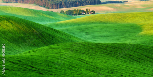 Deurstickers Groene spring field. picturesque hilly field. agricultural field in spring
