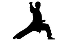 Silhouette Of Karate Hit With ...