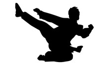 Silhouette Of Karate Jump And Kick
