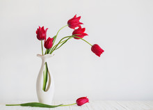 Red Tulips In Vase On White Ba...