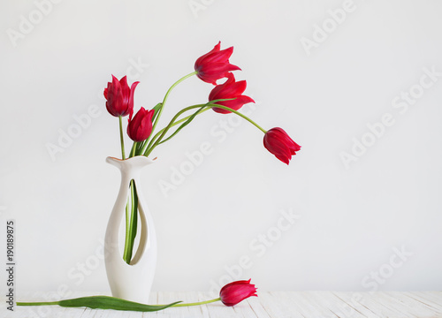red tulips in vase on white background