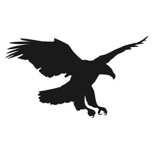 Flying Eagle Vector Illustrati...