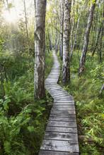 Poleski National Park In Poland