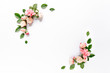 Leinwandbild Motiv Border frame with pink rose flower buds branches isolated on white background. Flat lay, top view. Floral background. Floral frame. Frame of flowers.