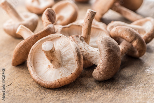 Stampa su Tela Shiitake mushrooms on the wooden background.