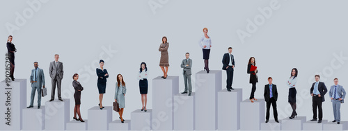 Fotografiet  Business people team and diagram. Isolated over white background