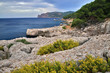 Mallorca seascape with stone rocky coast with yellow wild flowers in the foreground and blue sea in the background with cloudy sky.