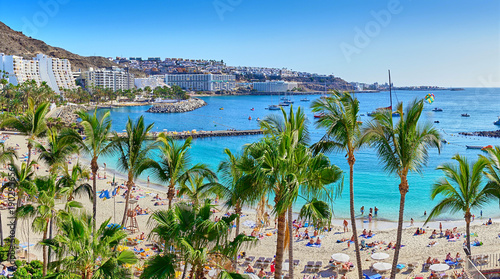 Anfi beach with palm trees / Island of Gran Canaria, Spain