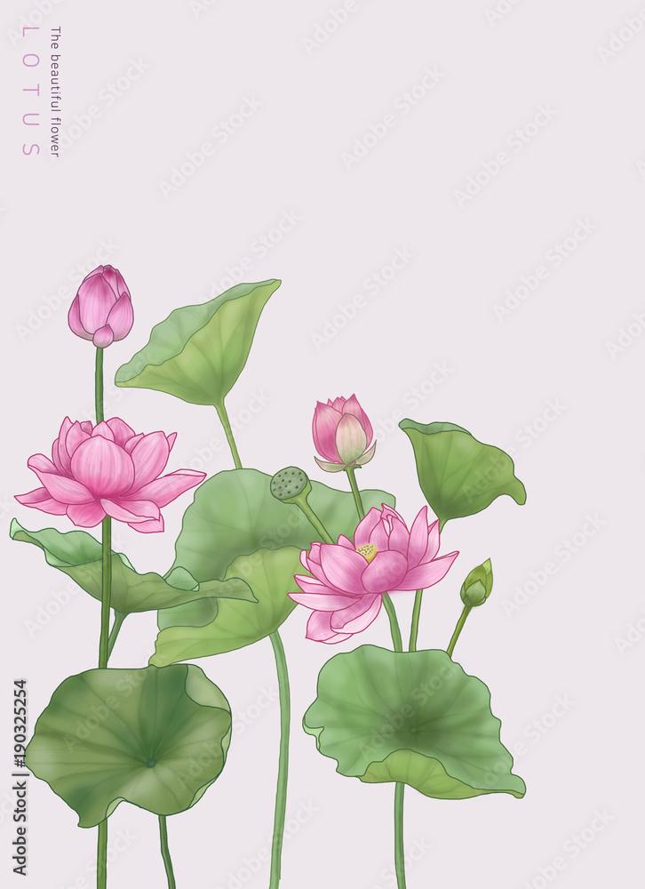 flower graphic & illustration