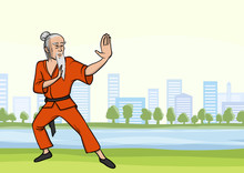 Old Man Practicing Kung Fu Or ...