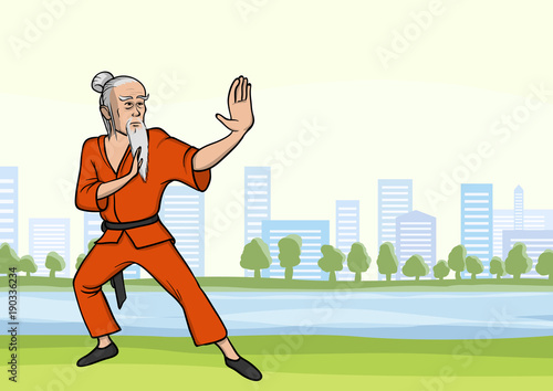 Old man practicing kung fu or wushu in city park Wallpaper Mural