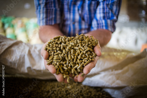 Fotografía  Close up image of hands holding animal feed at a stock yard