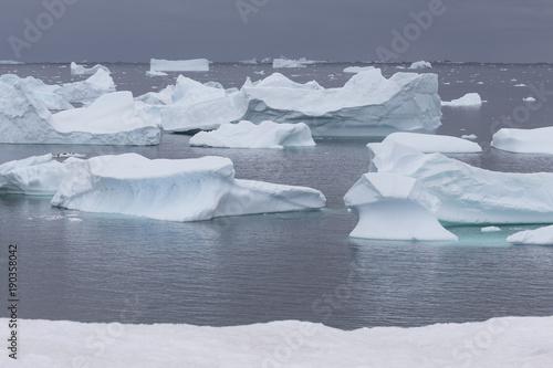 Spoed Foto op Canvas Antarctica Eisberge vor Petermann Island
