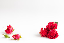 White Background With Red Roses