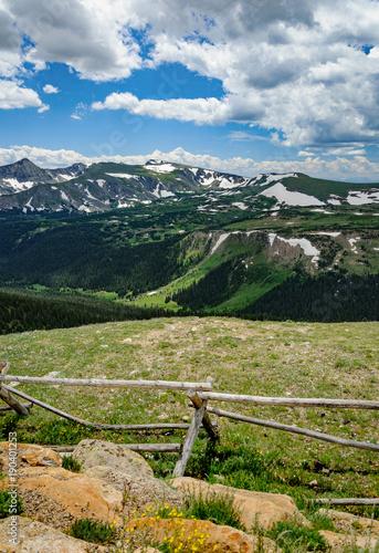 Fotografie, Obraz  Alpine meadow at Loveland Pass in Colorado