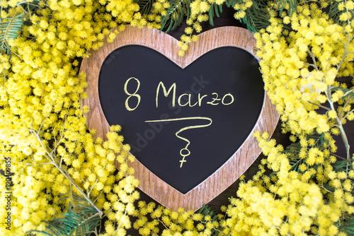 Fiori 8 Marzo.La Mimosa E Il Fiore Simbolo Dell 8 Marzo Giornata Internazionale