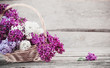 lilac in basket on old wooden background