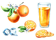 Orange Juice Set With Glass, Fruits And Ice Cubes. Watercolor Hand Drawn Illustration, Isolated On White Background