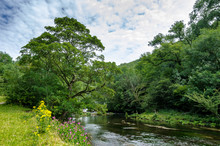 A River Running Through The Wo...