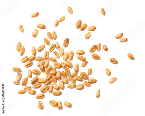 Fotografía  wheat grains isolated on white background. top view