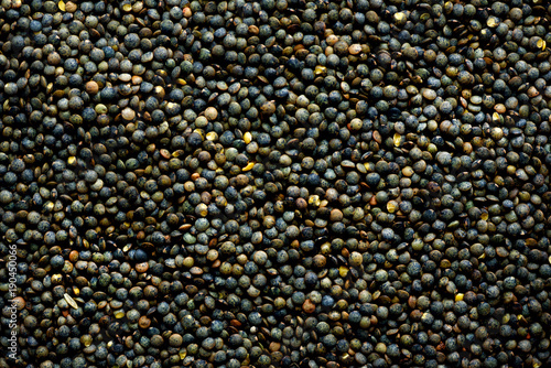 Raw organic marbled green lentils texture. Food ingredient background. Top view