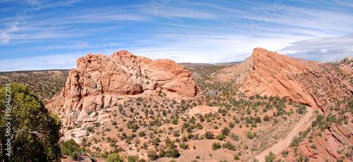 In de dag Zalm Panorama of desert landscape southern utah redrocks.