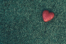 Red Heart Laying On Grass With...