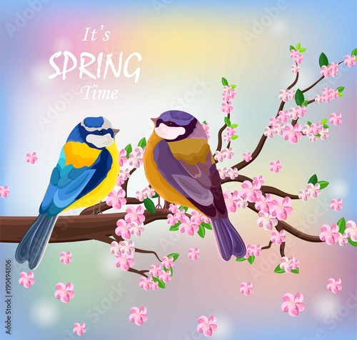 Photo Vector birds couple on a Blossom cherry flowers branch