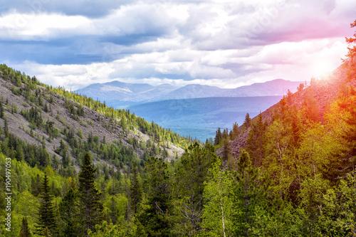 Summer beautiful mountain landscape Canvas Print