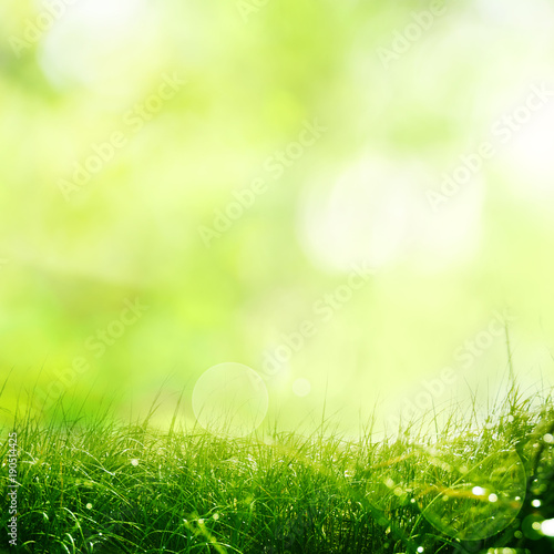 Tuinposter Lente Nature meadow with spring background