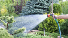 Hand Garden Hose With Water Sp...