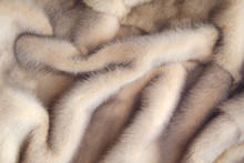 Mink Coat. The Texture Of Thei...