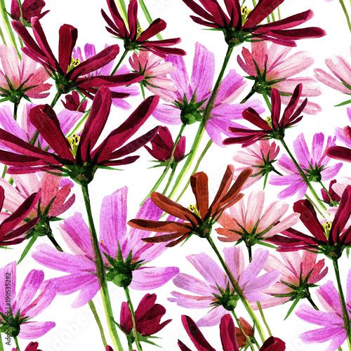 bezszwowy-tlo-wzor-kwiaty-kosmos