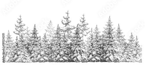 jednolity-element-lasu-jodlowego
