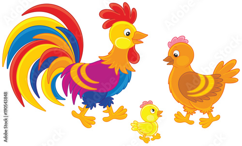 Rooster, hen and chick Wallpaper Mural