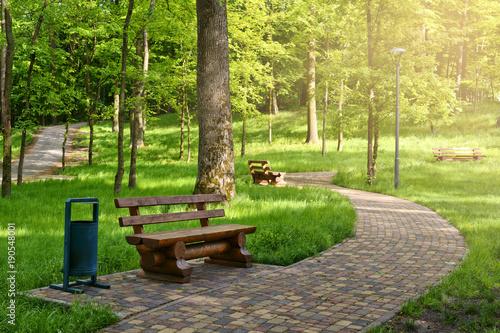 Plakat Ścieżka stóp w słonecznym parku