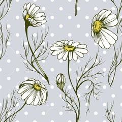 Fototapeta Inspiracje na wiosnę Chamomile flower vector seamlees pattern hand drawn herbal texture on flowered background