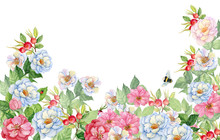 Rose Hip Flowers Background Fo...