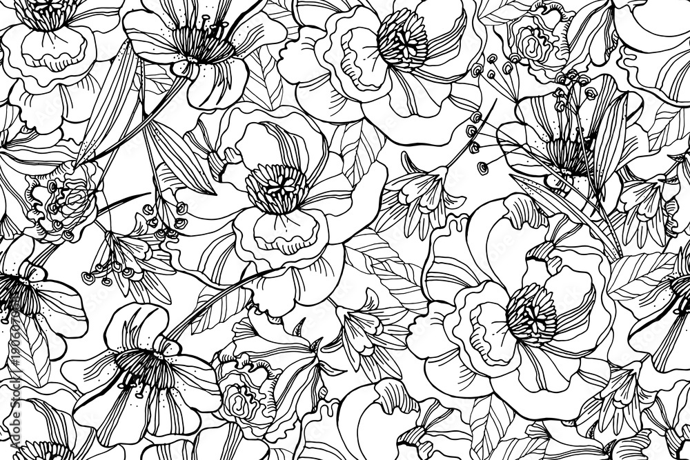 Fototapeta Black and white seamless pattern with beautiful ranunculus and meadow flowers. Cute elegant floral background for home textiles, interiors, linens, cotton fabric, scrap book.