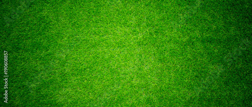 grass field background. green grass. green background - 190608857