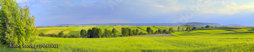 Foto op Plexiglas Platteland Panoramic landscape with green fields and trees. Europe, Poland, Holy Cross Mountains.