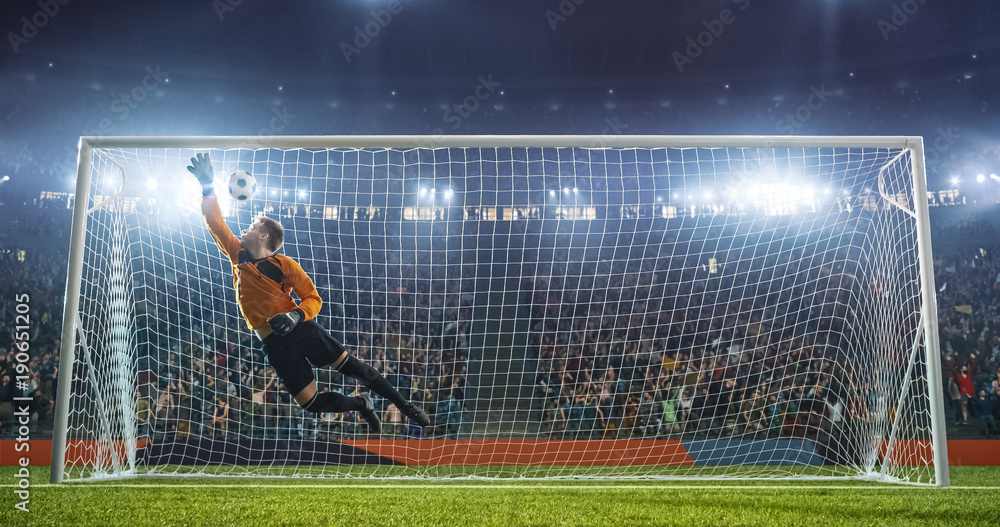Fototapeta Soccer goalkeeper in action on the stadium