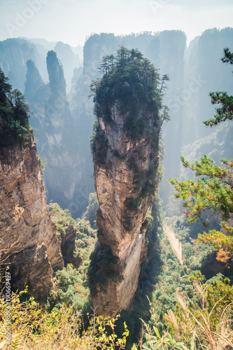 In de dag China Avatar mountains in chinese national park Zhangjiajie