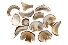 Dried Porcini Mushrooms.