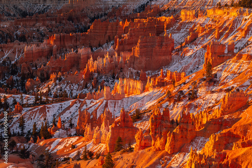 Fotobehang Bordeaux Sunrise over Hoodoos in Bryce