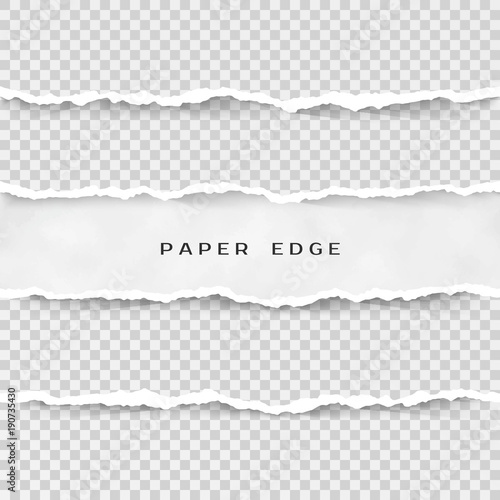 Fotografía  Set of torn paper stripes