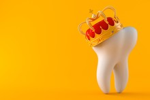 Tooth With Crown