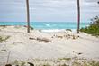 Varadero sandy beach, Cuba