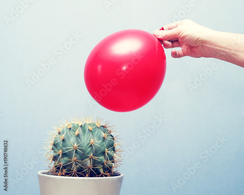 Cactus and red balloon, close up